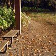 【演奏動画】ジャズアレンジの枯葉(Autumn Leaves)をピアノで弾いてみました。