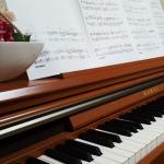 【演奏動画】風の通り道 / 映画「となりのトトロ」よりをピアノで弾いてみました♪